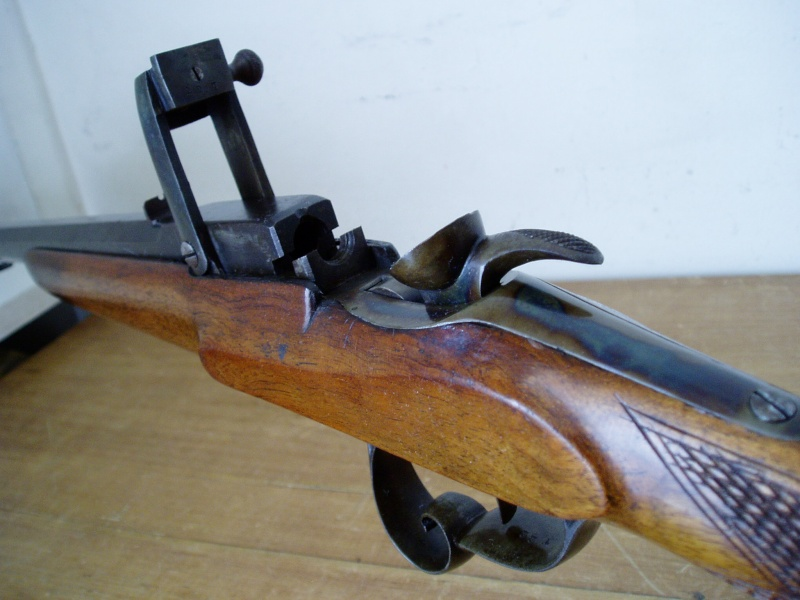 Ma plut t grande collection d 39 armes par edgar page 12 for Carabine de salon 6mm flobert