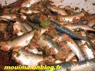 cimg0511 dans poissons