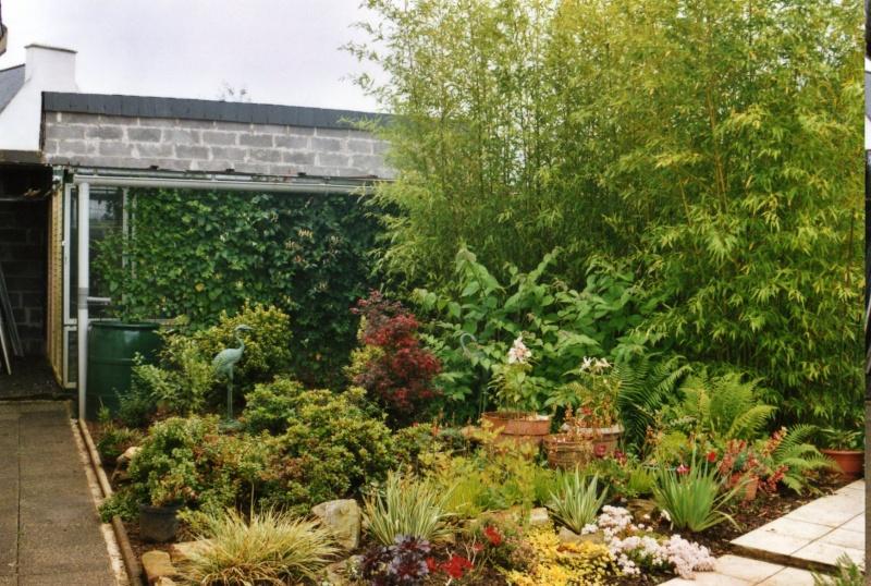 Passion des colombes et tourterelles exotiques conception et methode d 39 elevage - Jardin interieur montreal colombes ...