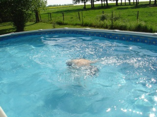 Premier bain !  dans Le jardin des souvenirs 00510