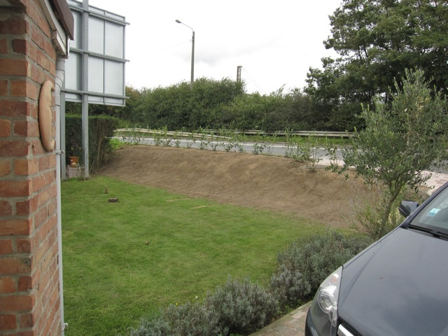 Relooking Jardin D 39 Ancolies Page 6