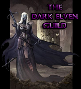 The Dark Elven Guild
