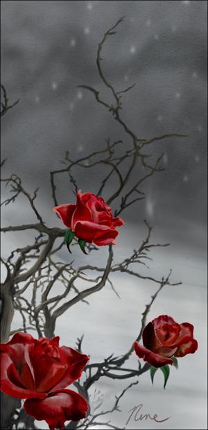 Domaine de la rose sauvage