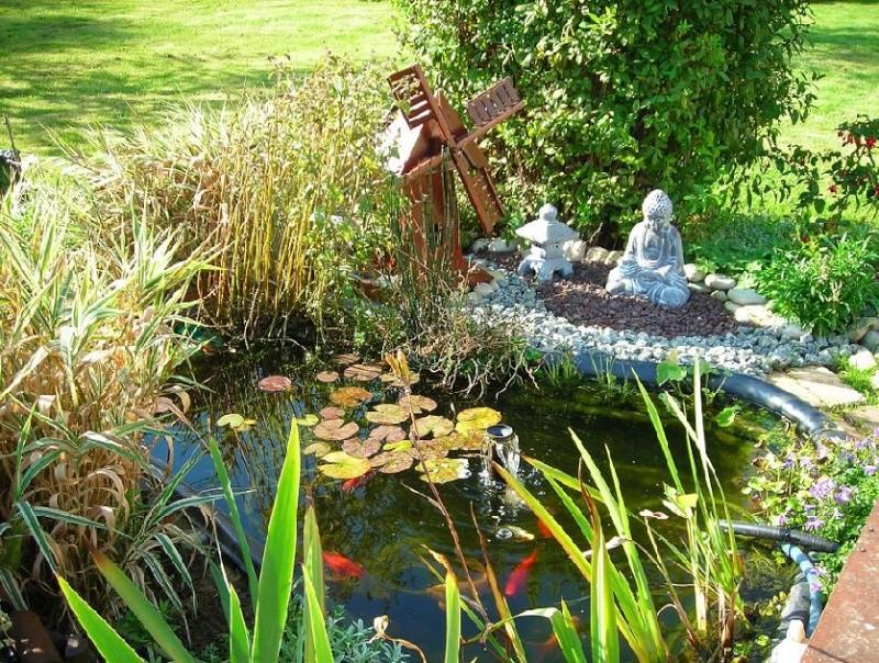 Mamzelle didounne76 mon petit bassin de jardin photos - Petit jardin octobre brest ...