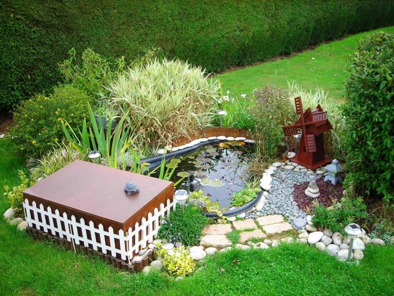 Mon petit bassin de jardin 500 l photos page 2 - Petit bassin de jardin ...