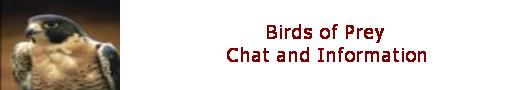 https://i29.servimg.com/u/f29/14/69/45/87/bird11.png