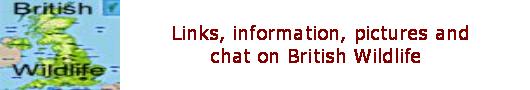 British Wildlife News