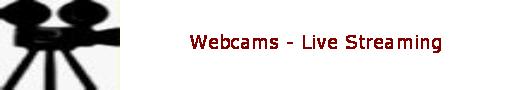 Web Cam Links