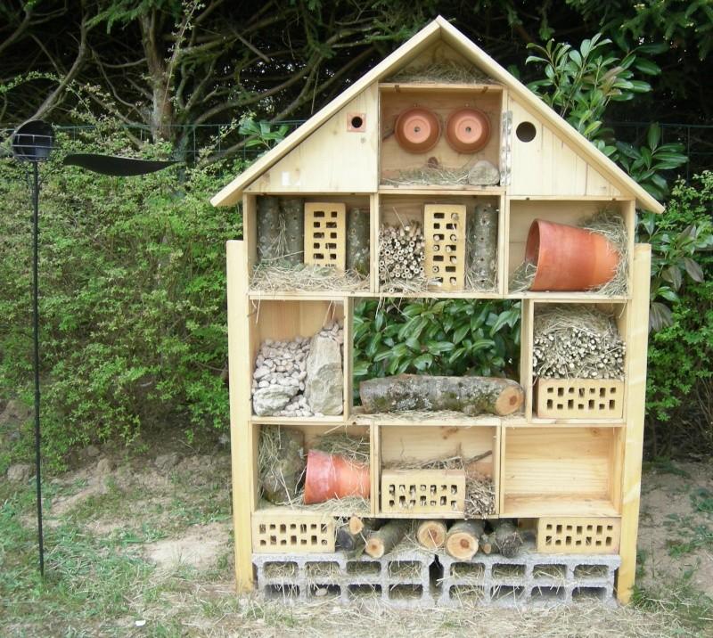 mon h tel insectes. Black Bedroom Furniture Sets. Home Design Ideas