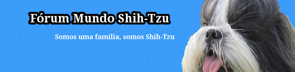 Mundo Shih-Tzu